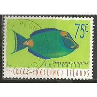 Кокосовы острова. Рыба носорог оранжевый. 1997г. Mi#358.