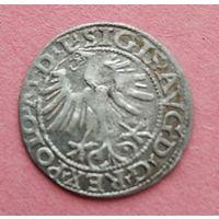 Полугрош 1565