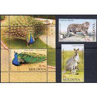 Молдова Молдавия 2013 фауна зоопарк птицы леопард кенгуру **