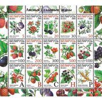 Седьмой стандартный выпуск (9 и 13 февраля) Беларусь 2004 год (538-552) серия из 15 марок в малом листе