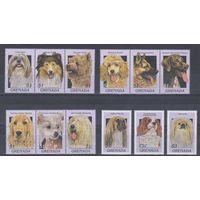 [1160] Гренада 1997. Фауна.Собаки.