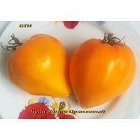 Семена томата Чудо Земли Оранжевый