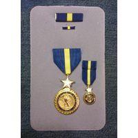 """Медаль """"За выдающуюся службу"""" ВМС США. Полный комплект. - ЗНИЖКА - %"""