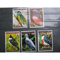 Марки - фауна, Гвинея, большой размер, птицы