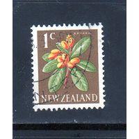 Новая Зеландия.Ми-393. Карака (Corynocarpus laevigatus). 1960.