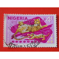 Нигерия. Фауна.