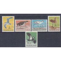 [1189] Нидерланды 1961. Фауна.Птицы.