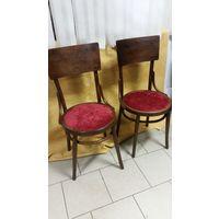 Венские стулья цена за 1