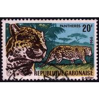 Кошки. Габон. 1966. Леопард. Марка из серии. Гаш.