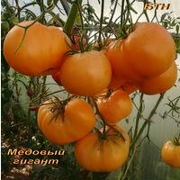 Семена томата Медовый гигант