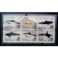 Восточный Тимор 2001  г. Дельфины. Фауна, полная серия + Блок #0084-Ф1