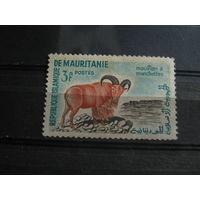Марки - фауна, Мавритания. чистая
