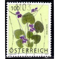 Австрия.Ми-2652. Фиолетовый - Виола odorata Серия: Альпийские цветы. 2007.