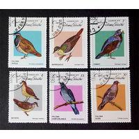 Куба 1979 г. Птицы. Фауна. полная серия из 6 марок #0010-Ф1P2