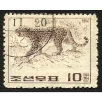 Кошки. Корея. 1964. Леопард. Марка из серии. Гаш.