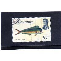 Маврикий. Ми-345. Дорада-дельфин.(Coryphaena hippurus). Серия: Морские животные. 1969.