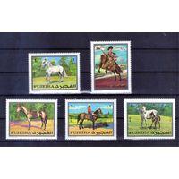 Лошади на марках Фуджейры