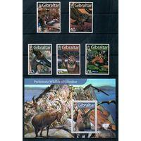 Фауна Гибралтар 2007 год серия из 5 марок и 1 блока (М)