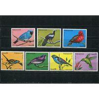 Парагвай. Птицы. Вып.1973