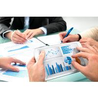 Курсовая - Проблемы развития проектного финансирования в Республике Беларусь - Бизнес- инвестирование