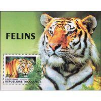 ТигрыТого 2000 год 1 блок