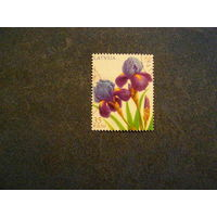 Латвия 2013, (468) Флора. Цветы. Ирисы, 1 марка