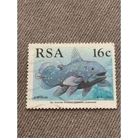 ЮАР 1989. Рыбы
