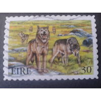 Ирландия 1999 волки