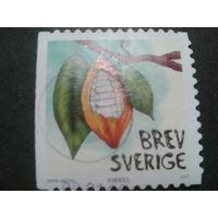 Швеция 2007 плод какао
